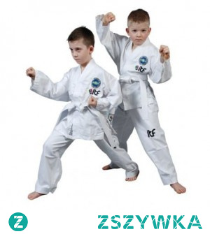 Czy wiesz, że kimono do judo dla dzieci to jedna z propozycji sklepu Daniekn dla najmłodszych? Jeśli Twoje dziecko uprawia sztuki walki, warto poznać katalog produktowy wspomnianego sklepu!