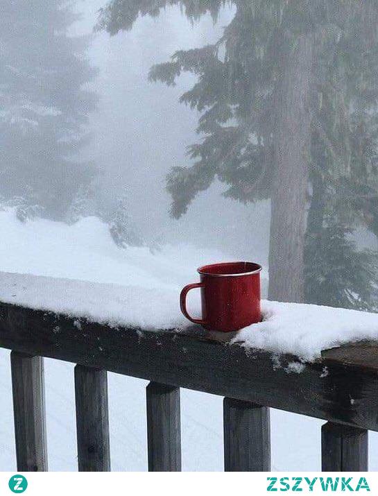 81 dni do świąt! Miłego tygodnia kochani ❄️ Macie ulubiony kubek w którym pijecie swój ulubiony napój? My mamy kubeczek z reniferem i śnieżynka, cały rok w nim pijemy ☕