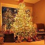 Okładka ☃ Christmas time ⁂