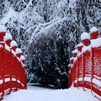 Okładka Zima :)