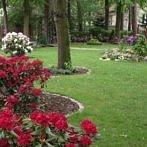 Okładka ogrodnik