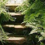 Okładka ogrody naturalistyczne