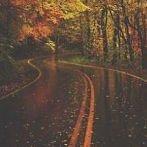 Okładka Jesiennie