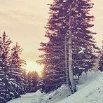 Okładka Winter is coming