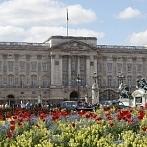 Okładka Pałace