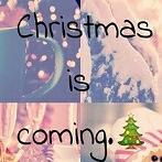 Okładka Winter&Christmas