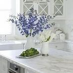Okładka Dom - Kuchnia