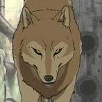 Okładka Wolf's Rain <3