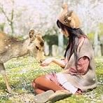 Okładka Japanesse Dream ❀