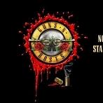 Okładka Guns n' roses