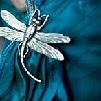 Okładka Dragonfly