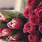Okładka Flowers