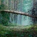 Okładka Forbidden Forest