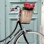 Okładka Bikes