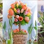 Okładka Wiosna i Wielkanoc