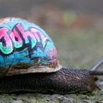 Okładka Graffiti love