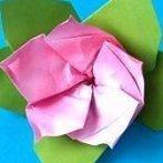 Okładka origami