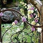 Okładka Brama do tajemiczego ogrodu