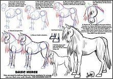 Jak narysować konia...