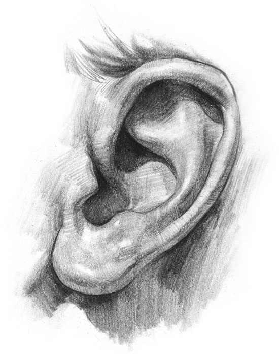 jak narysować ucho