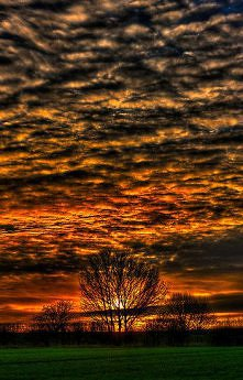 Sunset over Willow Park. by Nigel Butterfield