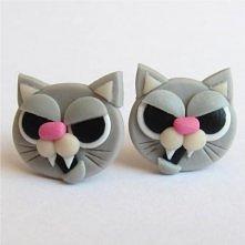 straszne koty o_O