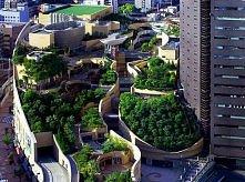 ogród miejski?