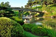 ogród botaniczny w Chicago
