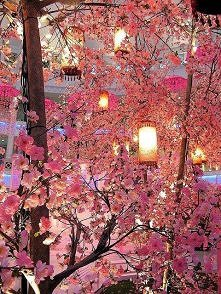 Japonia :) <3