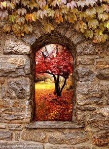 Jesień... taką kocham ;)