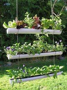 połyczki dla twojego ogrodu