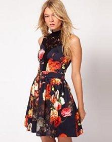 Oasis Rococo Lace Dress z k...