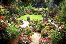 ogród we wrześniu, london