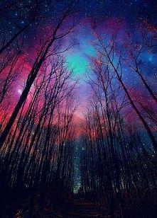 Galaxy wood.