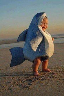 Baby Shark Costume!