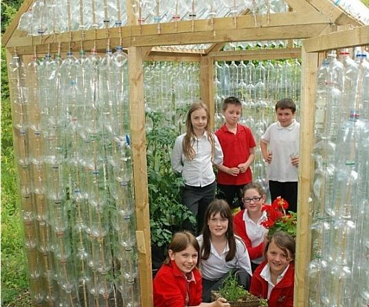 szklarnia z plastikowych butelek