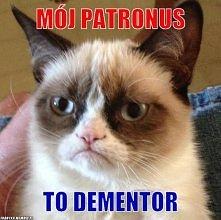 a jaki jest Twój patronus? :)