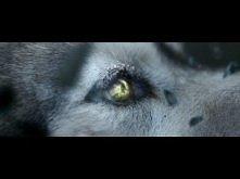 David Guetta - She Wolf (Fa...