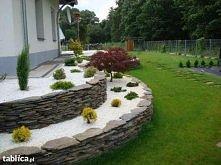ogród2