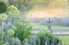Poranek w ogrodzie