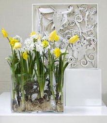 kwiaty na wielkanoc