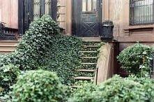 magiczne schody
