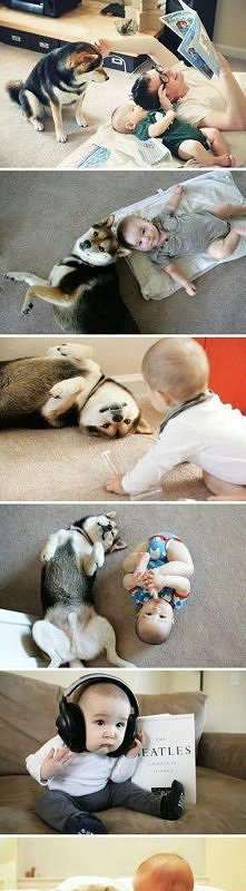 husky best nanny ever
