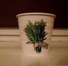 doniczka na zioła