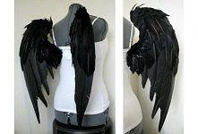 skrzydła :)
