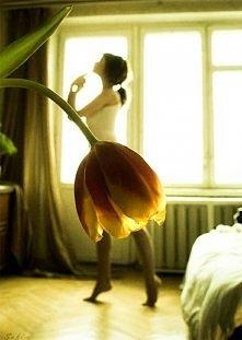 Tulipan Świetne! :)
