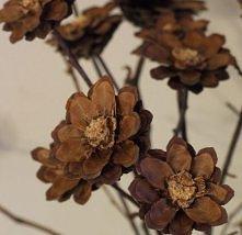 kwiaty z pociętych szyszek sosnowych