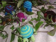 Żółwi gang :)