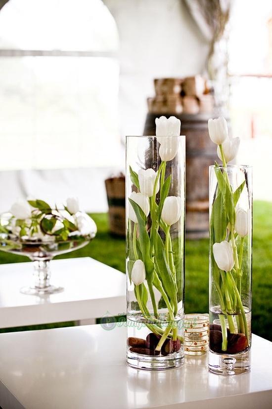 Tulipany Na Dekoracje Zszywkapl