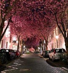 ulica w Bonn, Niemcy